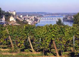 Loire Valley Wineries
